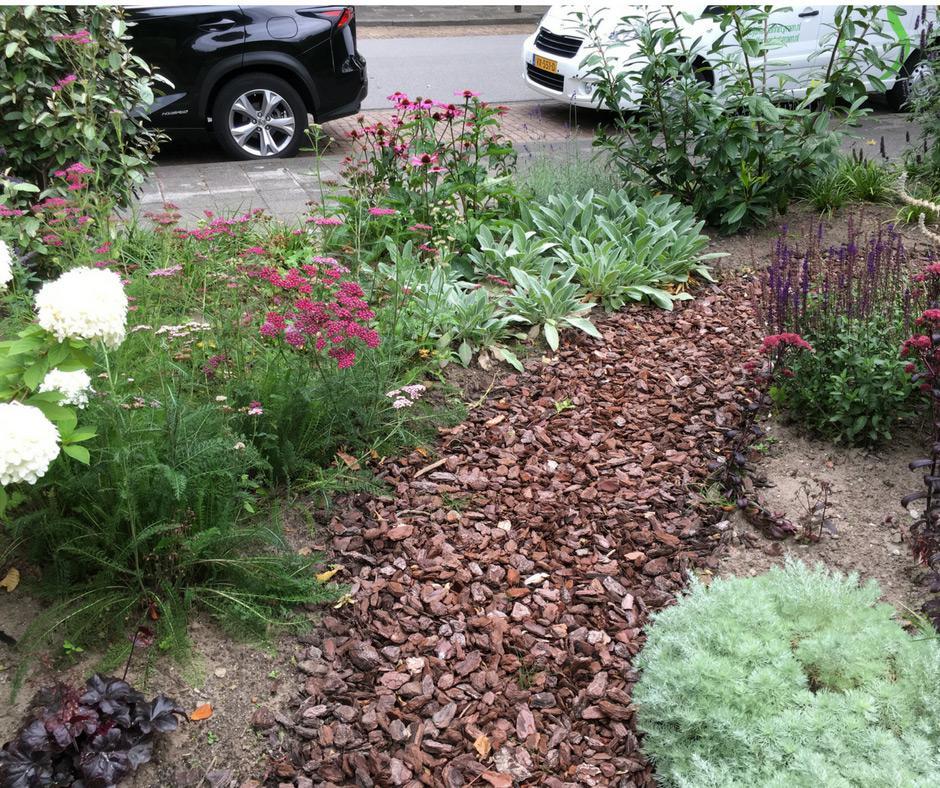 Kijk mee naar een geslaagde tuinrenovatie hovenier in for Hovenier den haag